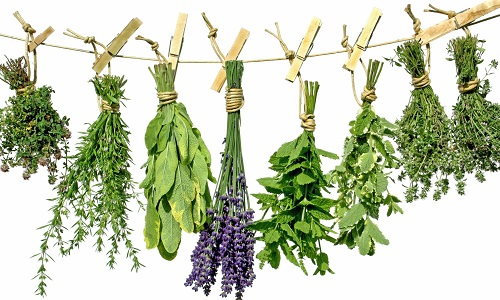 the Use of herbs for the treatment of meningioma