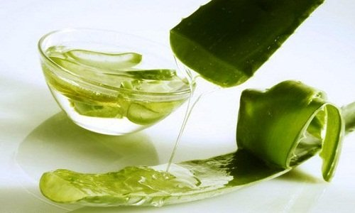 aloe Juice when lipoma on the back