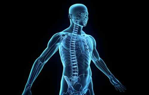 Symptoms of spinal shock