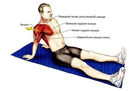 Лечение правого плечевого сустава в домашних условиях